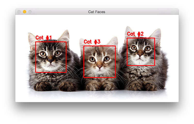 Figure 4: Detecting multiple cats in the same image with OpenCV (source).